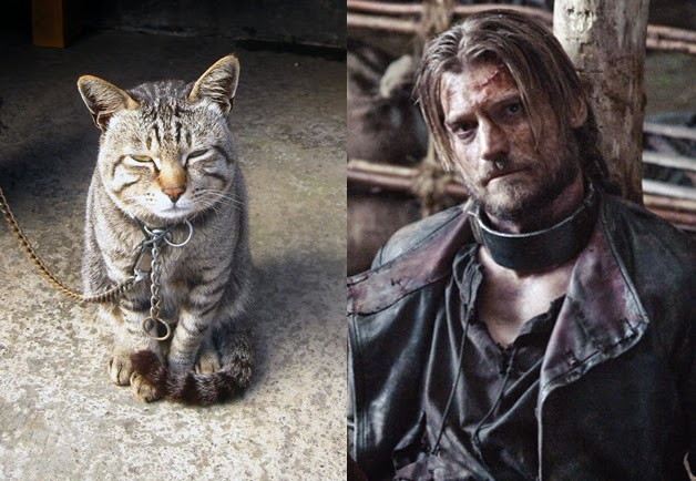 game of cats jaime