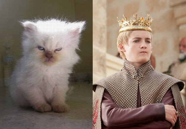 game of cats joffrey