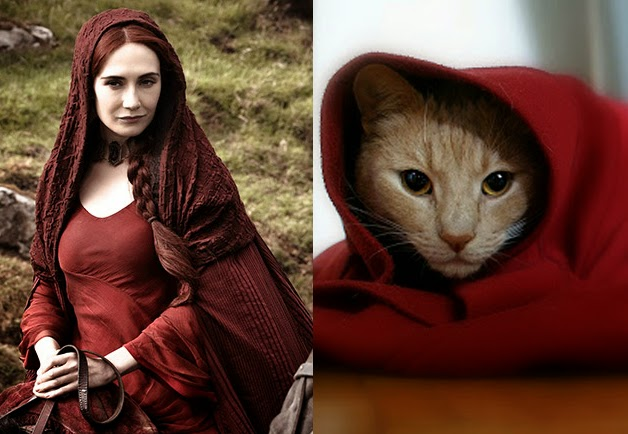 game of cats melisandre