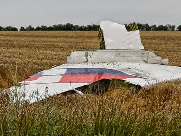Celebrities offer condolences to MH17 victims' families