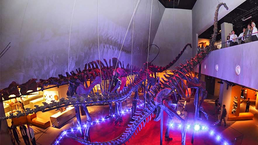 Singapore's first natural history museum to open doors