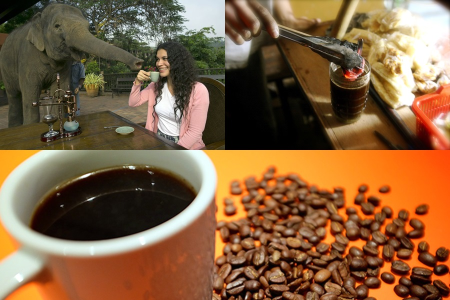 Weird and bizarre coffees from around the world
