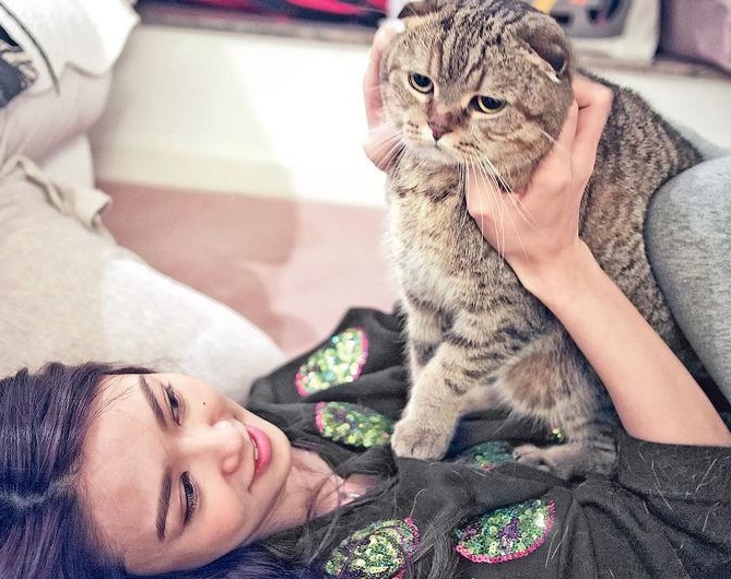 Fiona Sit: Cats saved me from depression!
