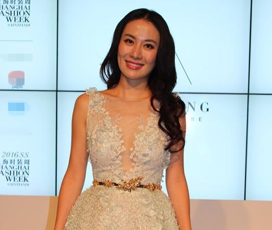 Michelle Ye slams former housemaid for blackmail