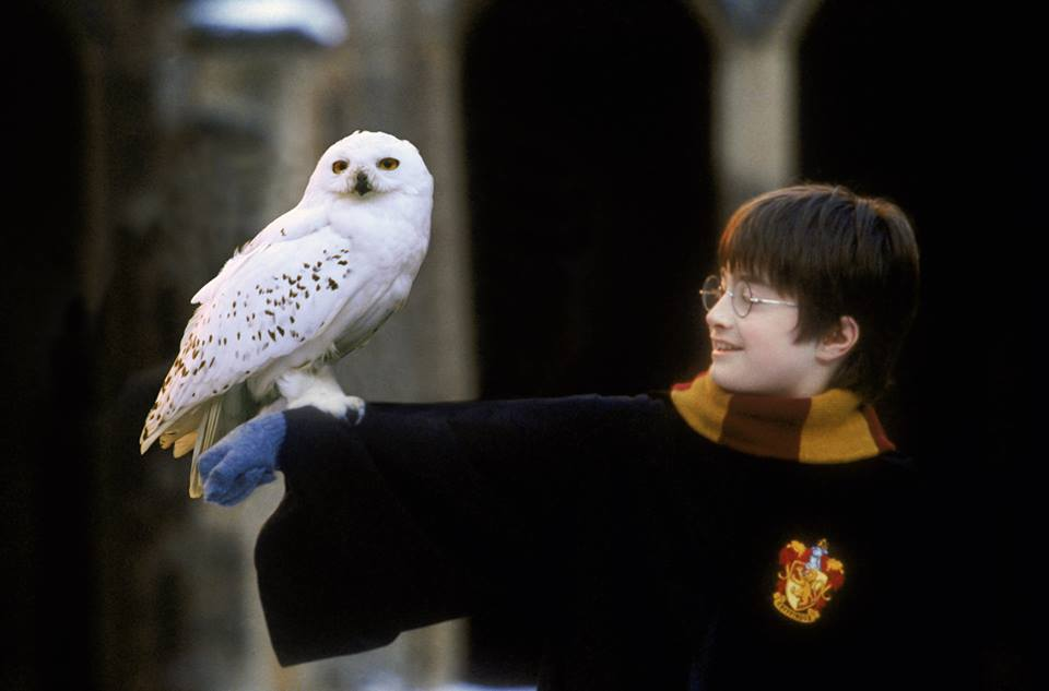 Harry Potter concert in Malaysia receives new dates