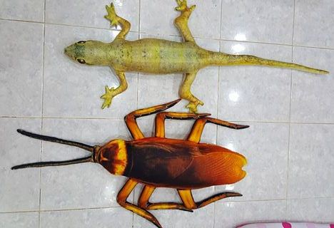 Huggable lizard and cockroach pillows to accompany you at night