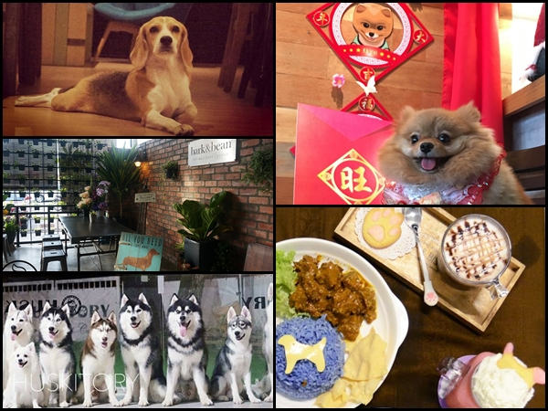Catch up with friends at these dog cafés around Malaysia