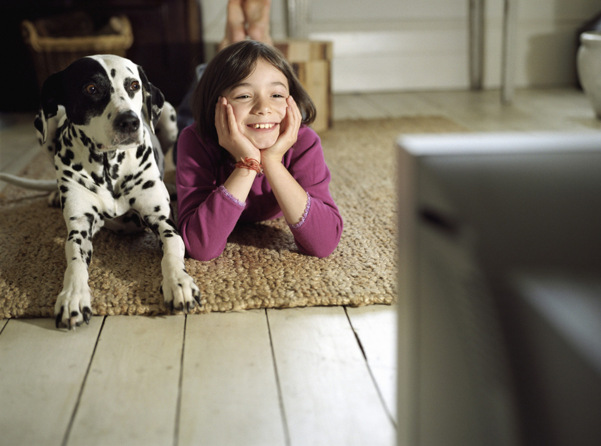 This is the Netflix show your pets love to binge watch with you!