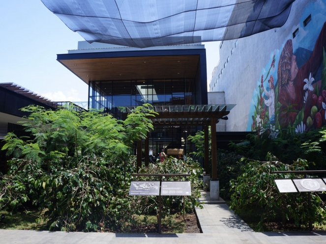 Southeast Asia's largest Starbucks comes with a life-sized coffee farm
