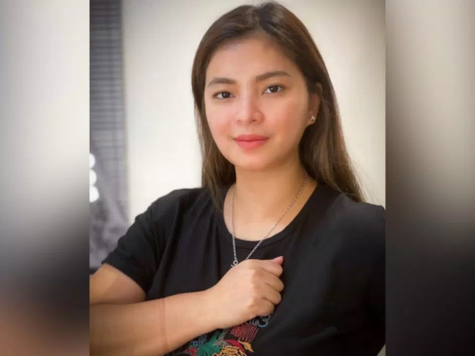 Angel Locsin: funds to fight against pandemic